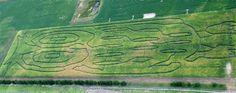 Haunted corn maze, Bad Axe, MI  $12  Oct 25, 26