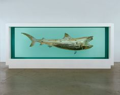 Damien Hirst - Death Explained, 2007