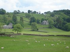 Looking out from Hilltop Farm {Beatrix Potter's home in the Lake District}   stunning countryside
