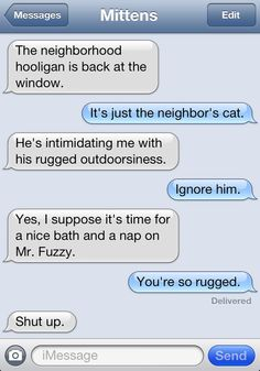 A Cat Friend Oversteps a Stinky Boundary, So Mittens Texts