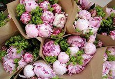 Beautiful pink peonies. #flower #petals #romantic #bouquet