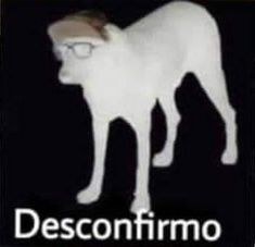 Memes Estúpidos, Stupid Funny Memes, Jokes, Reaction Pictures, Funny Pictures, Haha, Spanish Memes, Wholesome Memes, Cursed Images