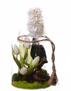 Hiacynt biało kremowy ogród w słoju