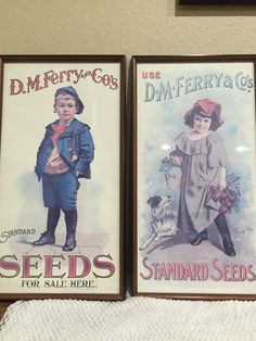 Nostalgic seed poster advertising for D. M. Ferry & Standard Seeds Company and antique looking frame with normal wear on sides and corners. The