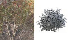 Marian Hosking's Botanical Silver Jewelry at Gallery Funaki