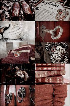 totouchthefiretwice: Harry Potter Aesthetics: Hogwarts Houses -...