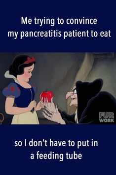 Me trying to convince my pancreatitis patient to eat so I don't have to put in a feeding tube. Veterinary Memes, Veterinary Medicine, Veterinary Technician, Canine Pancreatitis, Compassion Fatigue, Tech Humor, Pet Vet, Feeding Tube, Vet Clinics