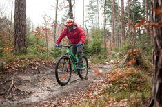Zumbi F11 29 All Mountain Bike, Touring, Poland, Germany, Europe, Walking Dead Coral, Deutsch