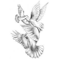 Image result for peace dove tattoo