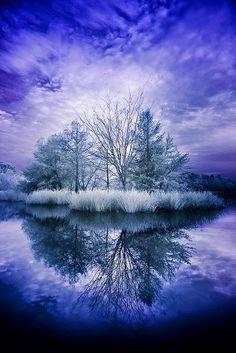 Winter Reflection - Holiday$pots4u
