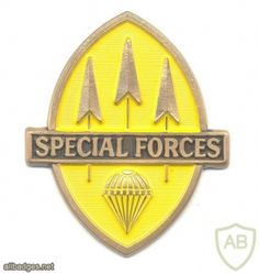 PHILIPPINES Special Forces qualification badge Army & Navy, Special Forces, Bat Signal, Superhero Logos, Badge, Beret, Philippines, Fictional Characters, Berets