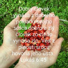 Malina Bible