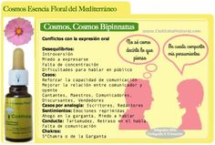 Cosmos La Esencia Floral de la Comunicación Oral - Club Salud Natural Elixir floral del mediterráneo