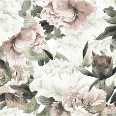 Anewall Blush Modern Classic Soft Pastel Floral Temporary Wallpaper