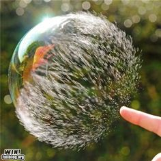 Wow. A photo of a bubble, mid-burst.