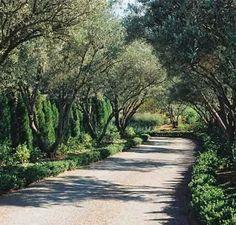 Landscape Driveways Design, Pictures, Remodel, Decor and Ideas