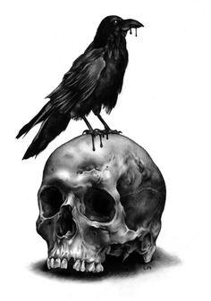 Skull & Raven