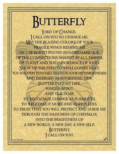 Butterfly - symbol of change - prayer