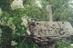 our sign for Tangly Cottage Gardening