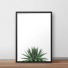 Aloe vera Tropical Print Aloe Art Photography di PrintableAtelier