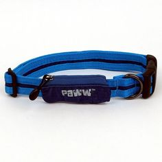 Paww Secret Agent Collar, Medium, Blue *** Special dog product just for you. See it now! : Collars for dogs
