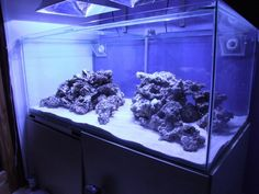 Do you have nice aquascaping? if so let's see it.. - Page 4 - Reef Central Online Community