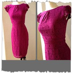 Dorothy Perkins lace dress Over the knee lady like lace dress. You will receive lots of compliments when you wear this dress. Very figure flattering . Fully lined UK size 12 US size 8 Dorothy Perkins Dresses