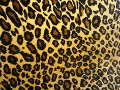 Natural Animal Print Pattern