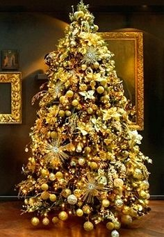 Gold, gold and more gold on this tree