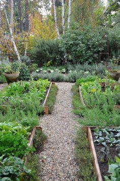 Garden Path / Magic Garden <3