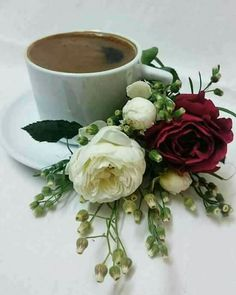 Good Morning Roses, Good Morning My Love, Good Morning Coffee, Coffee Love, Coffee Cups, August Images, Coffea Arabica, Coffee Industry, Coffee Places