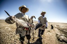 On the high Bolivian Altiplano, the changing world of the isolated flamingo-hunting Chipaya people - a living relic of an ancient past. [Photo Story]