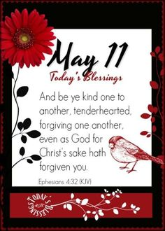 Ephesians 4, Forgiving Yourself, Forgiveness, Christ, Blessed, God, Dios, Allah, The Lord