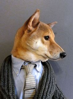 It's Nice That : Sartorial pooches for you this morning courtesy of this stylish Menswear Dog