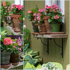 Duvara Monte Edilecek Raf Yaptırıp Çiçek Saksılarınızı Üzerine Koyabilirsiniz..