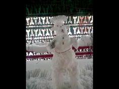 Снегурочка отдыхает