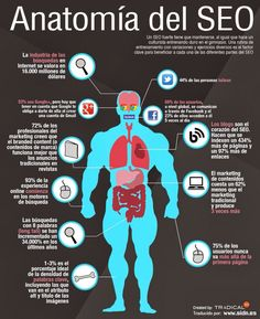 Anatomía del SEO. Infografía en español. #CommunityManager