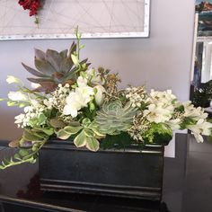 Send White Flowers and Succulents in Encinitas, CA from Floral Design by Ari, the best florist in Encinitas. All flowers are hand delivered and same day delivery may be available. Arrangements Funéraires, Funeral Floral Arrangements, White Flower Arrangements, Succulent Arrangements, Succulents, Succulent Centerpieces, Valentines Flowers, Valentine Nails, Valentine Ideas