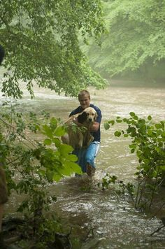 Man saved dog stranded in the middle of the swollen creek