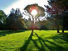 2015 - Mas des Comtes de Provence - Jacqueline et Pierre - Mai 2015 - Le soleil se lève sur le 1er mariage de la saison