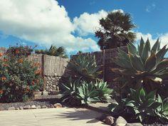 Finca de Arrieta, Lanzarote
