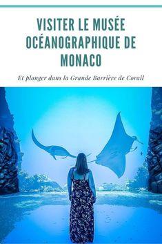 Visiter le Musée Océanographique de Monaco et plonger dans la Grande Barrière de Corail en famille #sortie #voyage #monaco #montecarlo #travei #famille #blogvoyage