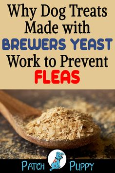 """Dog Care- Visit our post """"Brewers Yeast Dog Treats – 2 Flea Terminator Recipes"""" to find out Why Dog Treats Made with Brewers Yeast Work to Prevent Fleas. Diy Dog Treats, Homemade Dog Treats, Healthy Dog Treats, Puppy Treats, Dog Biscuit Recipes, Dog Treat Recipes, Dog Food Recipes, Easy Recipes, Brewers Yeast For Dogs"""