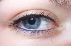 Image result for permanent eyeliner colors