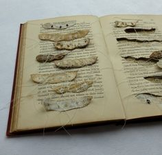 just a few seeds, altered book by Ines Seidel