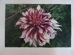 Título Dahlia Técnica Acuarela Dimensión 20 x 30 cm
