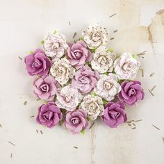 Prima Flowers DOWN UNDER Melbourne 577513