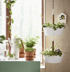 Začinsko bilje možeš posaditi u BITTERGURKA viseće tegle, a zatim teglu možeš ponijeti do radne ploče i pripremiti ukusna jela sa svježim listićima bilja. www.IKEA.hr/BITTERGURKA_viseca_tegla