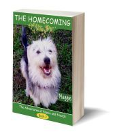 The homecoming 3D-Book-Template 4 Kids, Childrens Books, Homecoming, Promotion, Templates, June, 3d, Children's Books, Stencils