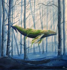 Forest Whale